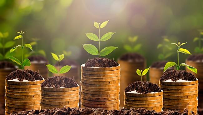 Финансовое планирование бизнеса цели
