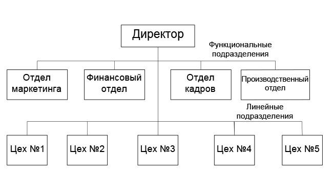 пример линейно-функциональной структуры управления