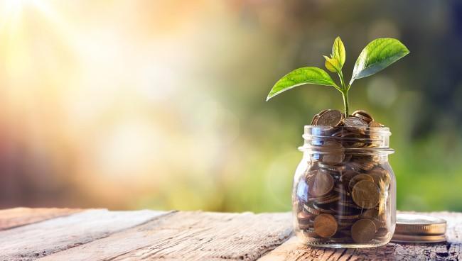 Инвестиции в акции разных предприятий