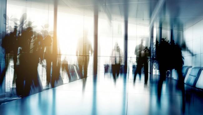 Права и обязанности предпринимателя